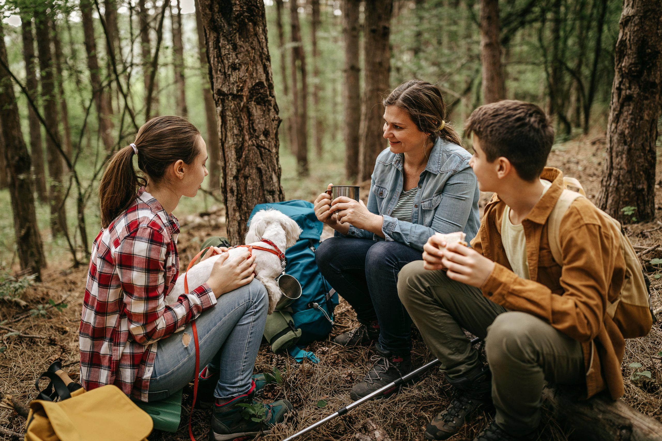 Family with pet dog relaxing while hiking at forest